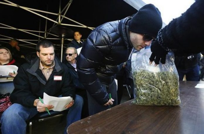 first ever marijuana auction