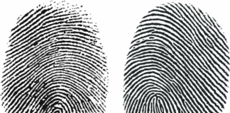 finger prints representing universal background checks