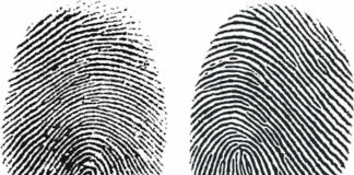 finger prints representing universal background checks