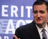 To Sen. Ted Cruz, The 'Rank And File Conservative Activists' Are Billionaires